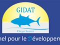 The GIDAT, an active group